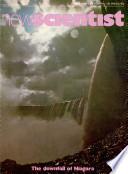 1979年11月15日