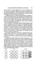 第 61 頁