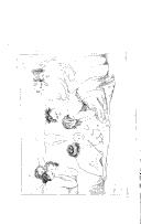 第xii页