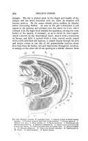 第 370 頁