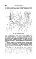 第 426 頁