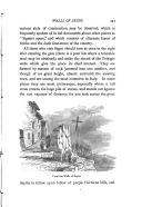 第 243 頁