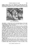 第 111 頁