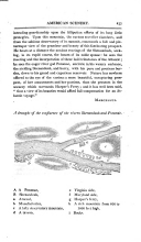 第 413 頁