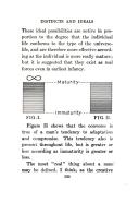 第 135 頁