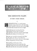 第 99 頁