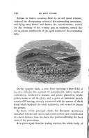 第 216 頁