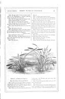 第 91 頁
