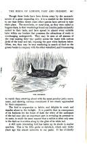 第 847 頁
