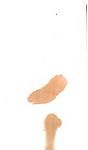 第 16 頁