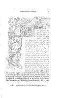 第 31 頁