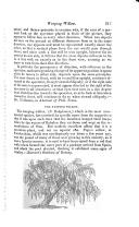 第 213 頁